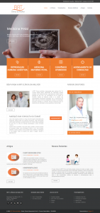 RRT Clinica da Mulher gestão de sites e seo